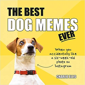 Best Dog Memes Ever-gift-ideas-Tessa Mae's with Attitude | Gifts and Homewares | Mapua NZ