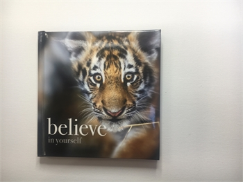 Believe in Yourself Book-affirmations-Tessa Mae's with Attitude | Gifts and Homewares | Mapua NZ