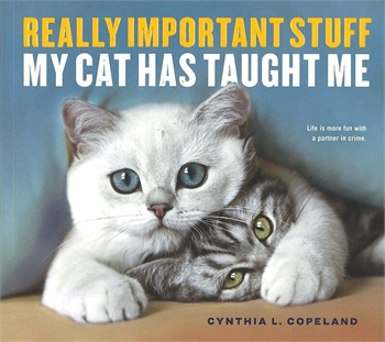 Really Important Stuff My Cat Taught Me-book-Tessa Mae's with Attitude | Gifts and Homewares | Mapua NZ